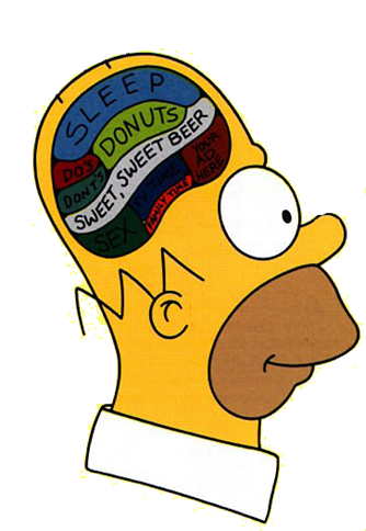 The Psychology Of Homer Simpson Image Retrieved From Ruffpoker